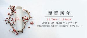20150101towelcp.jpg