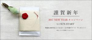 20170101newyear-blog.jpg